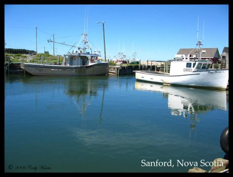 Sanford Cape Islanders by charris
