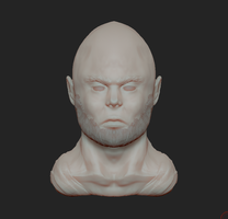Face Sculpt #1 by Dmeville