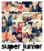 285 Super Junior icons by ohmyjongwoon