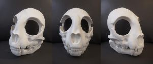 Full Cat Skull Mask - blank by Bueshang