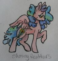 OC pony: Showy Feathers by QueenAnneka