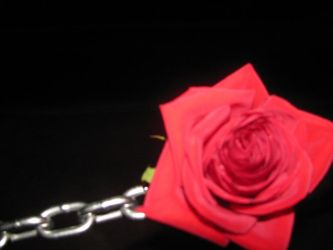 Chain linked Rose. by candycorpsex3