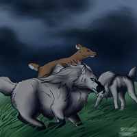 Hunt Before the Storm by SapphireWolf100