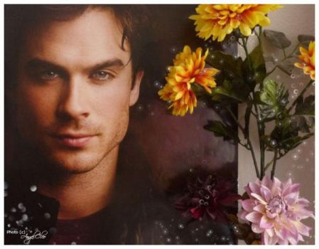 Damon Salvatore I by DesertQueen