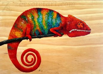 Panther Chameleon by ZoeSotet