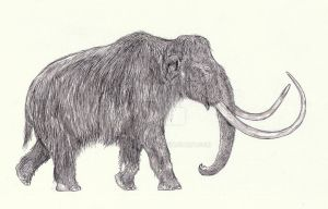 Mammuthus primigenius by Kahless28