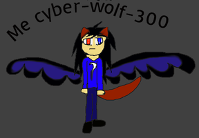 Me by Cyber-Wolf-300