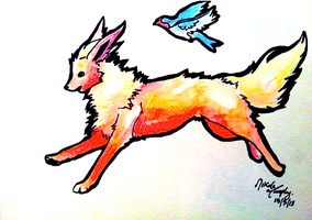 Flareon and Taillow Race