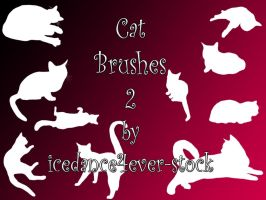 Cat Brushes 2 by icedance4ever-stock
