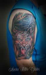 tiger cover up by aliceinsane