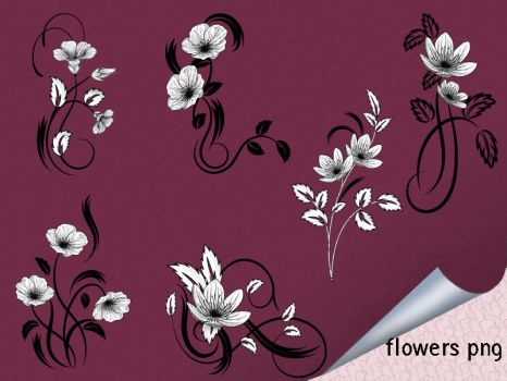 Flowers Png by roula33