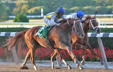 Curlin Wins the Gold Cup by Jessie-kad