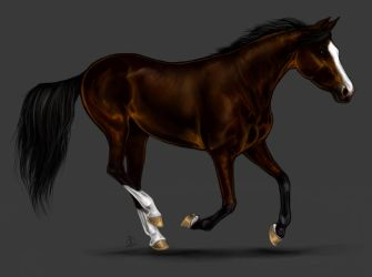 The Horse with Gold Hooves by Elsouille