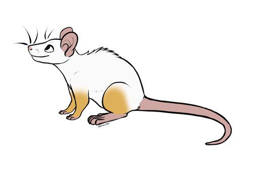 millemusen's Ratty 386 by Pitter-Paws-Rattery