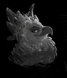 Harpy Eagle by SuperGiantBird