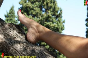 Hollyday Promise: Fedra 3 by Footografo