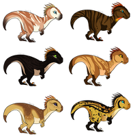 Raptor Adopts (0/6)-CLOSED by Agent-Taai