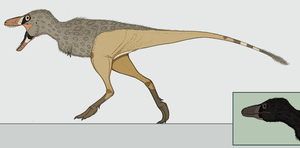 The Common Tyrant: Tyrannoferus tyrannoferus by Kazanlak10