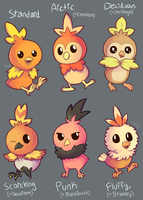 Torchic Pokemon Variations