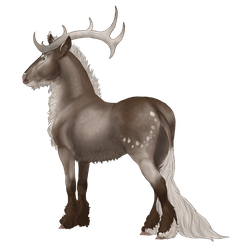 Victarion | Stag | Glenmore by MelonHeadGirl