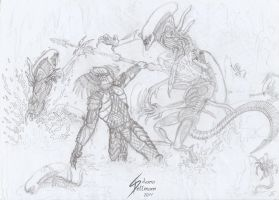 More fight by Dragunalb