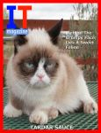 It Magzine by MHuang51491