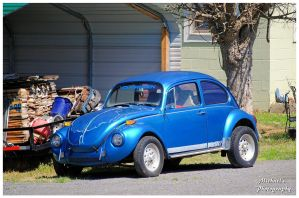The Blue Beetle by TheMan268