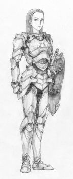 Paladin by Aerythes
