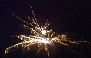 2006 Firework 5 by mintdawn