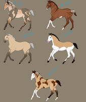 Foal Designs Hollendarts by SlytherinAcres