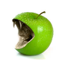 Green apple by Cllaud