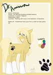 Amberpaw's 2016 Ref by StagetechyArt