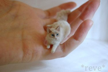 Miniature Ragdoll Cat * Handmade Sculpture * by ReveMiniatures