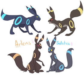 This is how I draw Umbreon by CalicoPikachu