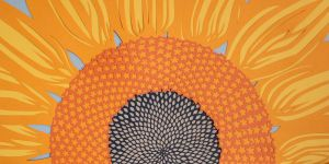 Helianthus I by folderol