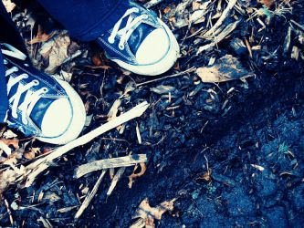 PSP: Shoes in the Woods by whenwewasfab