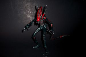 7-Inch Scale Super Predalien Custom Action Figure by Drakhand006