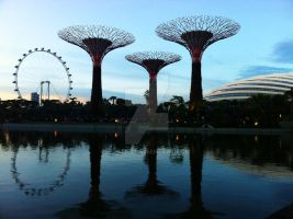 Gardens by the Bay by fjarla