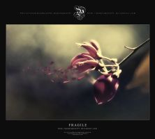 Fragile by pepelepew251