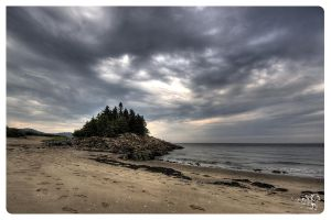 Spruces Rock and Almost Ocean by AmirNasher
