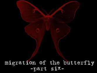 Migration of the Butterfly, 6 by suture