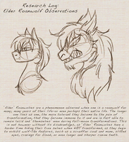Research notes -Elder Roanwolves by The-Clockwork-Crow