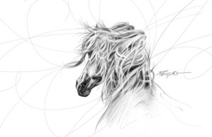 Hourse-pencil by HPRADO