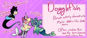 Dogglefish Reference Sheet by royalraptors