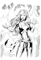 Phoenix Inks by devgear