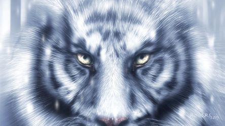 Siberian Tiger Wallpaper by Red-Rogers
