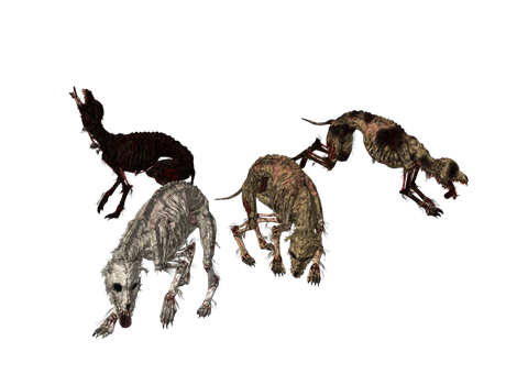 Undead Dogs xps mmd png by Tokami-Fuko