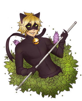 Chat Noir bouquet by manosu