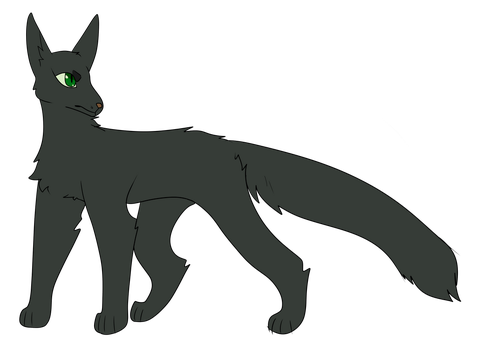 hollyleaf by silvaIly