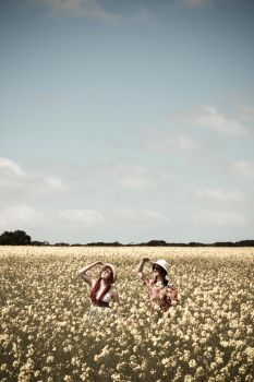 Canola fields, I see see by bakanya